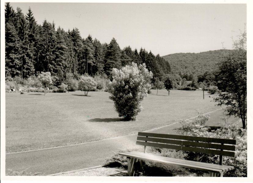 Waldfriedhof-scaled